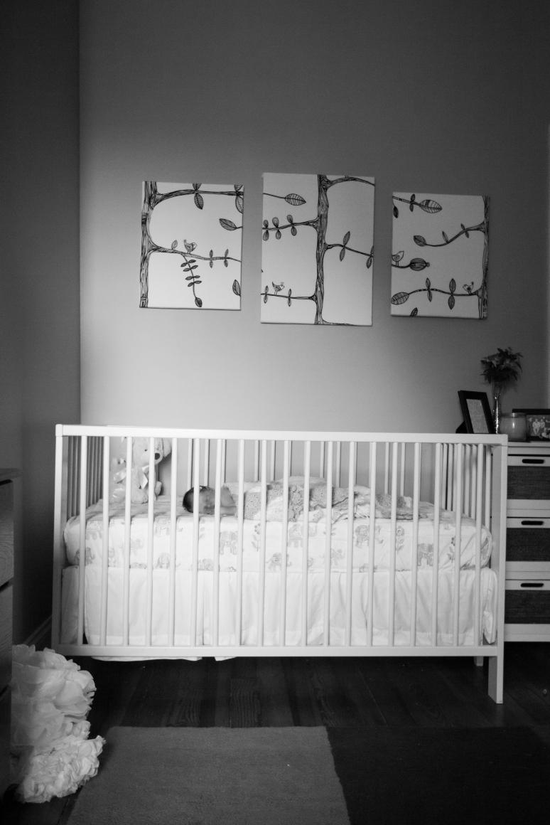 Baby Emilie-0884