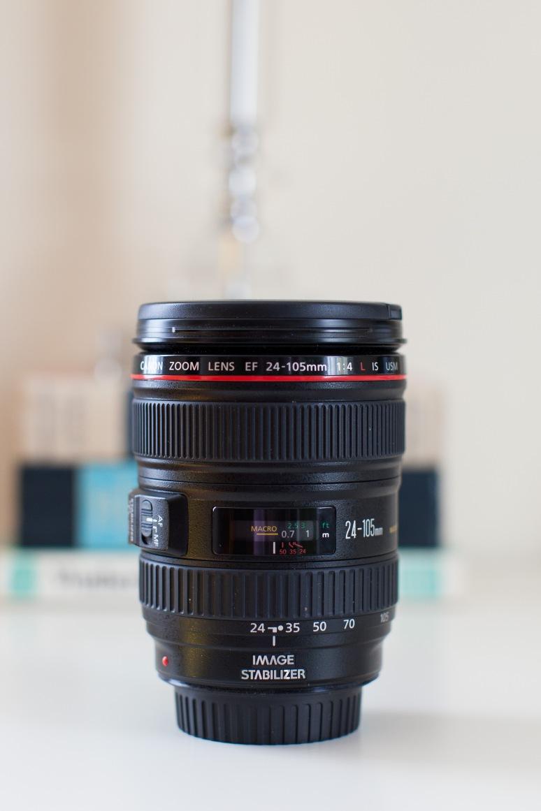 24-105 Lens-4019